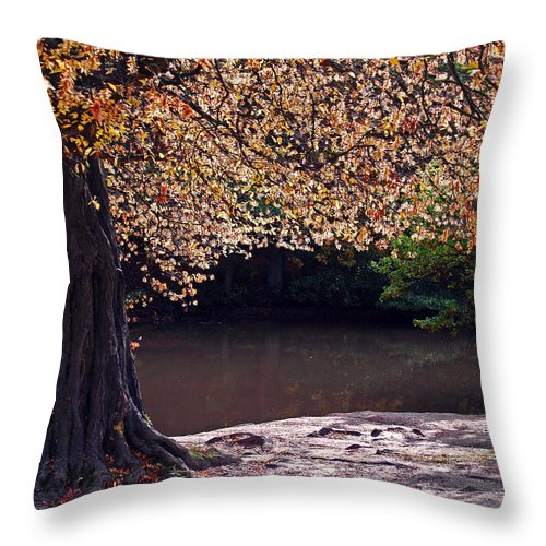Leaves Throw Pillow featuring the photograph Sunlit Autumn Canopy by Bel Menpes