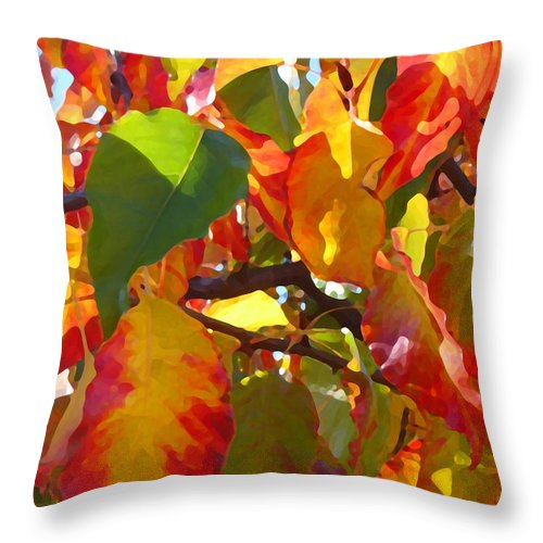 Fall Leaves Throw Pillow featuring the photograph Sunlit Fall Leaves by Amy Vangsgard