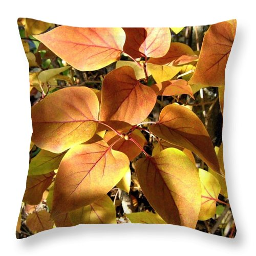 Lilac Leaves Throw Pillow featuring the photograph Sunlit Lilac Leaves by Will Borden