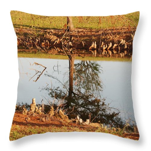 Water Throw Pillow featuring the photograph Sunny Pond by Rob Hans