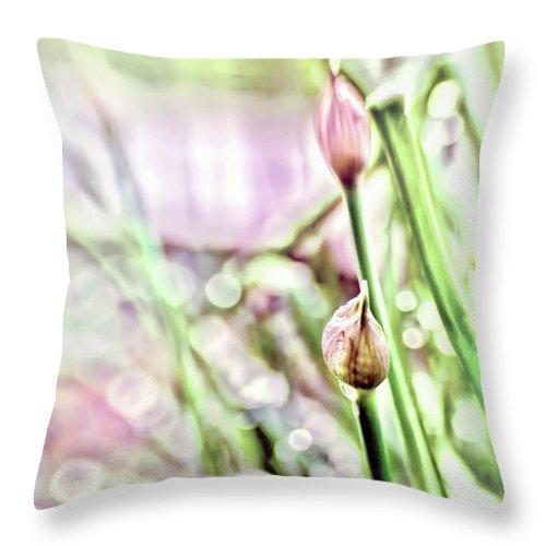 Allium Throw Pillow featuring the photograph Sunny Rain by Jean OKeeffe Macro Abundance Art