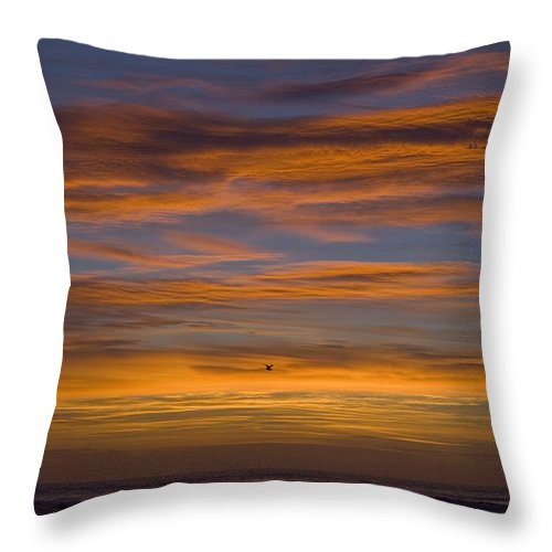 Sun Sunrise Cloud Clouds Morning Early Bright Orange Bird Flight Fly Flying Blue Ocean Water Waves Throw Pillow featuring the photograph Sunrise by Andrei Shliakhau