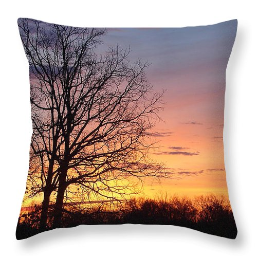 Tree Black Orange Throw Pillow featuring the photograph Sunrise In Illinois by Luciana Seymour