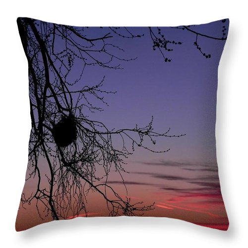 Landscape Throw Pillow featuring the photograph Sunrise on the Colorado Plains by Adrienne Petterson