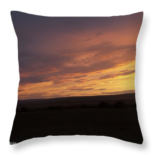 Sunset Throw Pillow featuring the photograph Sunset - 50 by George Phile