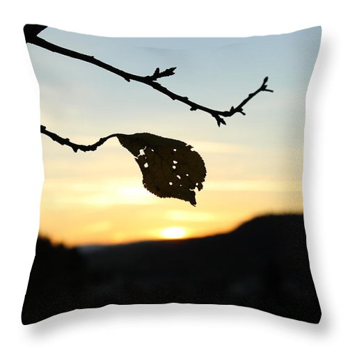 Sunset Throw Pillow featuring the photograph Sunset by Alena Madosova