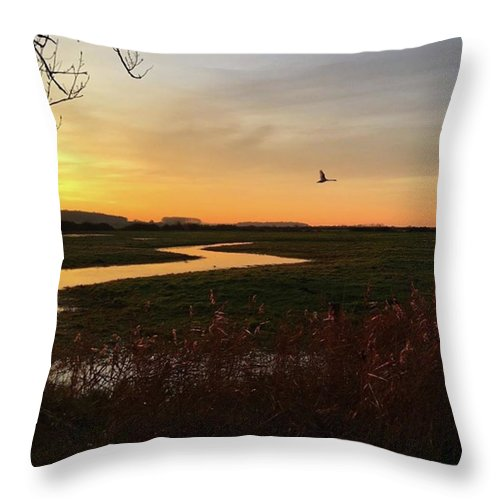 Natureonly Throw Pillow featuring the photograph Sunset At Holkham Today  #landscape by John Edwards