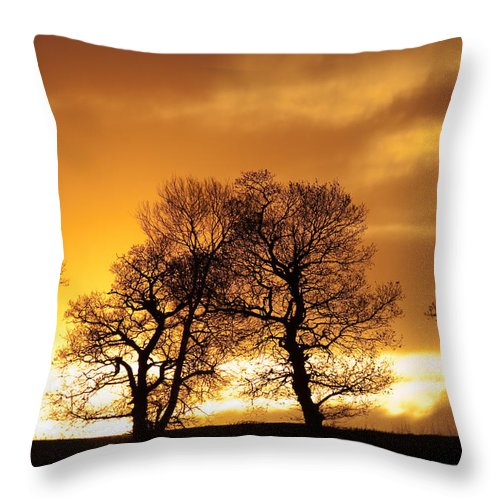 Sunset Throw Pillow featuring the photograph Sunset At Redhill by Bob Kemp