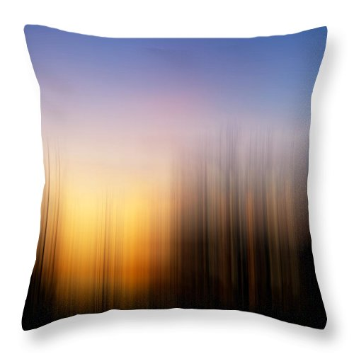 Motion Throw Pillow featuring the photograph Sunset Blur by Pam Elliott