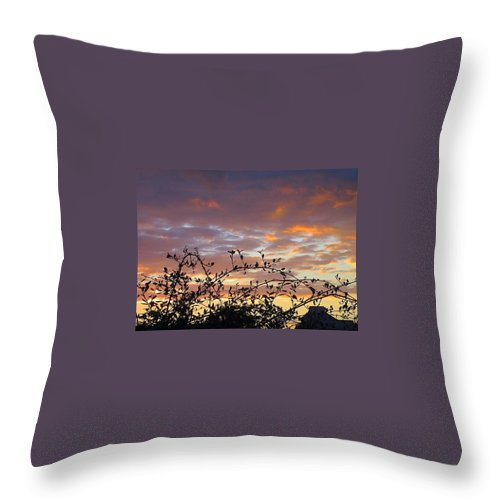 Sunset Throw Pillow featuring the photograph Sunset Colors To The West by Betty Buller Whitehead