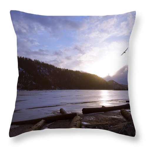 Bird Throw Pillow featuring the photograph Sunset Flight by Idaho Scenic Images Linda Lantzy