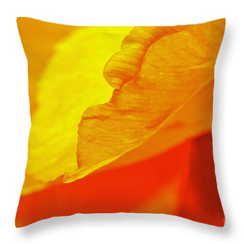 Flower Throw Pillow featuring the photograph Sunset Flower by Michael Cinnamond