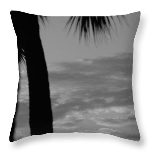 Black And White Throw Pillow featuring the photograph Sunset In Black And White by Rob Hans