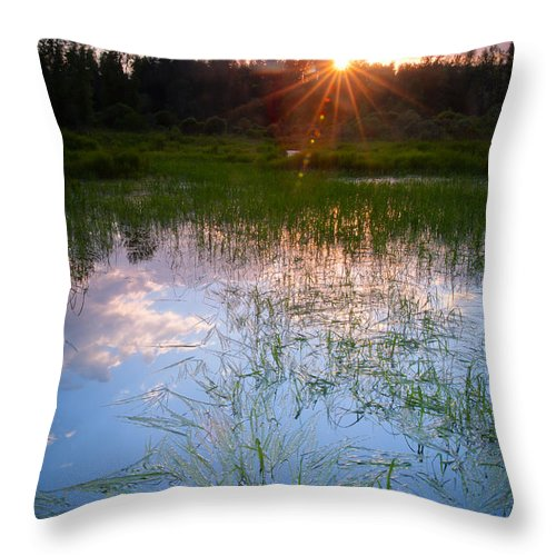 Marsh Throw Pillow featuring the photograph Sunset On The Marsh by Idaho Scenic Images Linda Lantzy