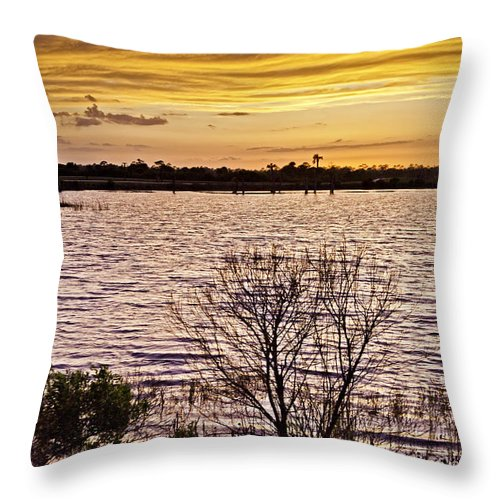 Sunset Throw Pillow featuring the photograph Sunset On The Wetlands by Rob Travis