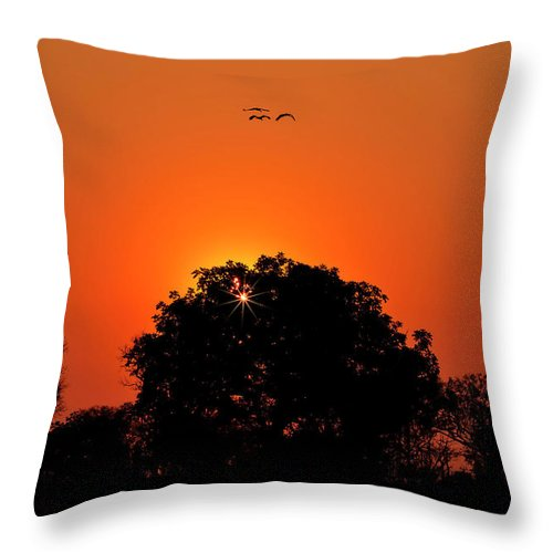 Sunset Throw Pillow featuring the photograph Sunset Over Botswana by Kay Brewer