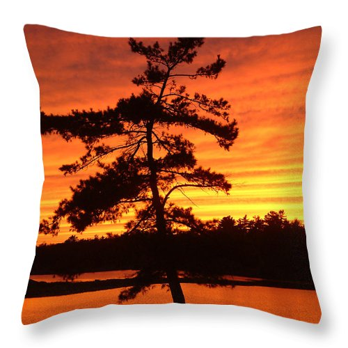 Pine Tree Throw Pillow featuring the photograph Sunset Solitude by Linda McRae