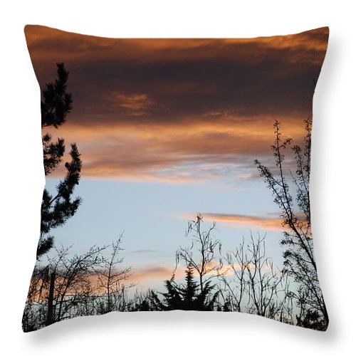 Sunset Throw Pillow featuring the photograph Sunset Thru The Trees by Rob Hans