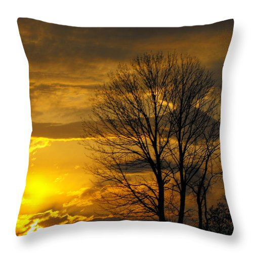 Sunset Throw Pillow featuring the photograph Sunset With Backlit Trees by Ginger Repke