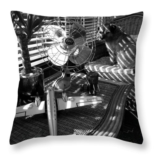 Still Life Throw Pillow featuring the painting Surburban Safari With Toto by Charles Stuart