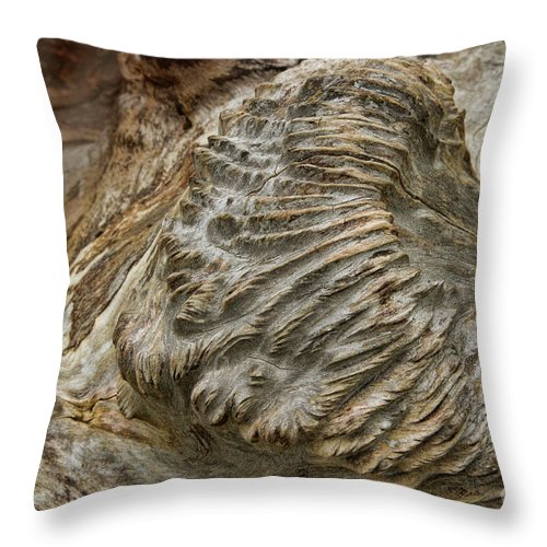 Tree Throw Pillow featuring the photograph Surface Attention by Marilyn Cornwell