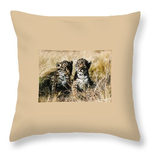 Bush Throw Pillow featuring the photograph Surprise by Leandro Sebastian  Marquez