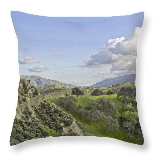 Landscape Throw Pillow featuring the photograph Swallow Bay Cliffs by Karen W Meyer