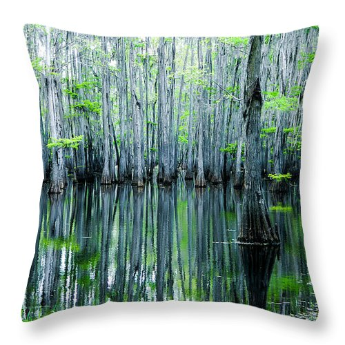 Algae Throw Pillow featuring the photograph Swamp in Louisiana by Ester McGuire