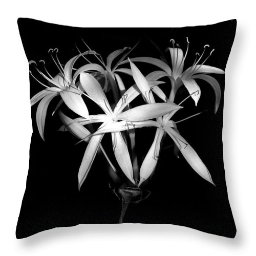 Nature Throw Pillow featuring the photograph Swamp Lilies by Peg Urban