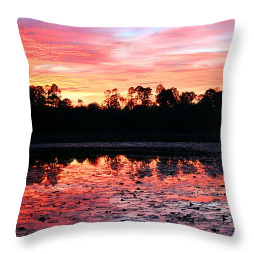 Swamp Throw Pillow featuring the photograph Swamp Sunset by Kristin Elmquist