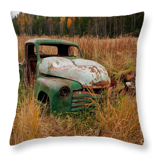 Truck Throw Pillow featuring the photograph Swamped by Idaho Scenic Images Linda Lantzy