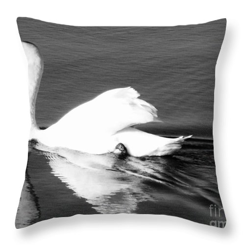 Swan Throw Pillow featuring the painting Swan In Motion On A Pond by Eric Schiabor