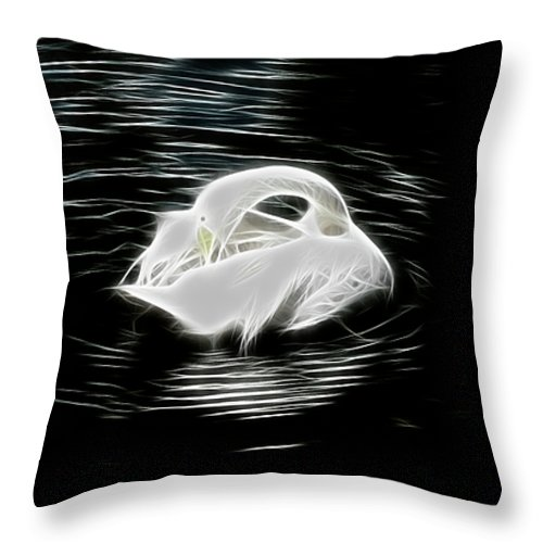 Swan Throw Pillow featuring the photograph Swan Lake by Douglas Barnard