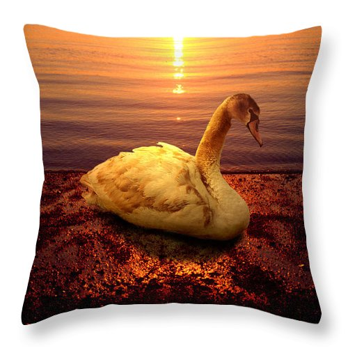 Animal Throw Pillow featuring the photograph Swan Lake by Yuri Lev