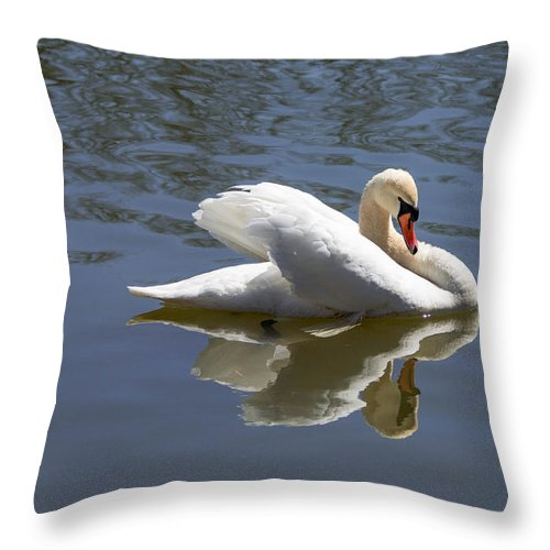 Swan Throw Pillow featuring the photograph Swan by Nancy Comley
