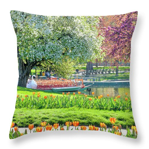 Back Bay Throw Pillow featuring the photograph Swans And Tulips 1 by Susan Cole Kelly