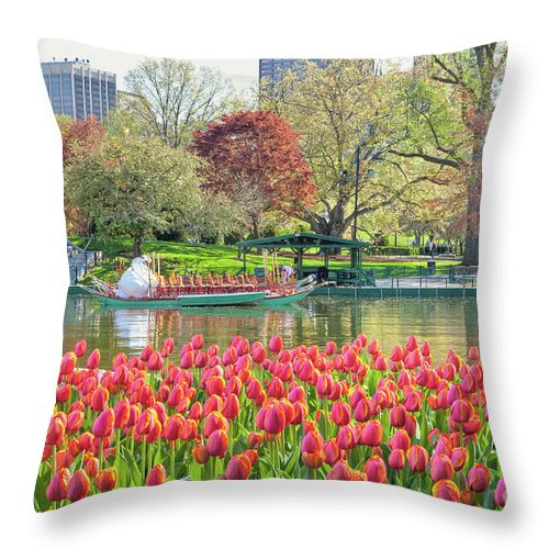 Back Bay Throw Pillow featuring the photograph Swans And Tulips 2 by Susan Cole Kelly