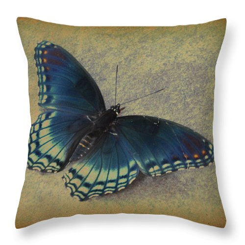 Butterflies Throw Pillow featuring the photograph Sweet Flutterby by Jan Amiss Photography