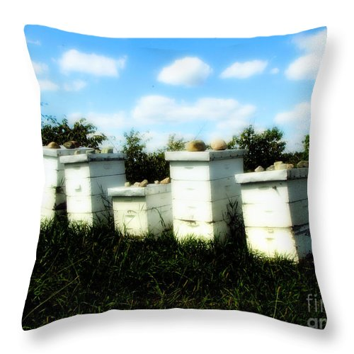 Honey Throw Pillow featuring the photograph Sweetened Nature by September Stone