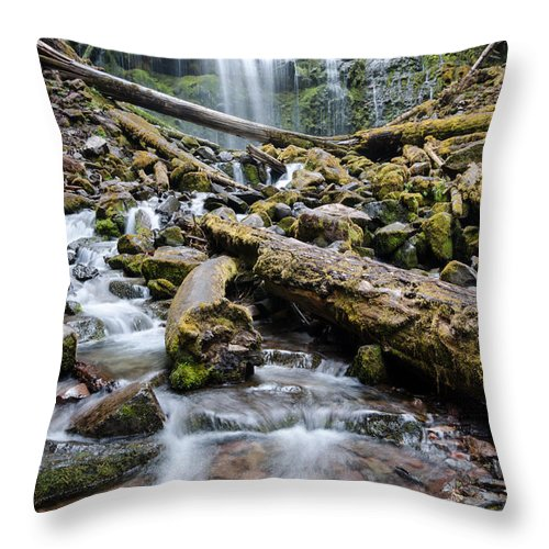 Waterfall Throw Pillow featuring the photograph Swift And Sure by Margaret Pitcher