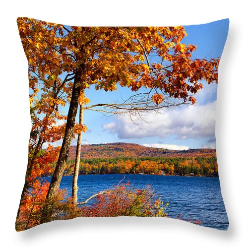 Newfound Lake Throw Pillow featuring the photograph Swimmers Cove by Shell Ette