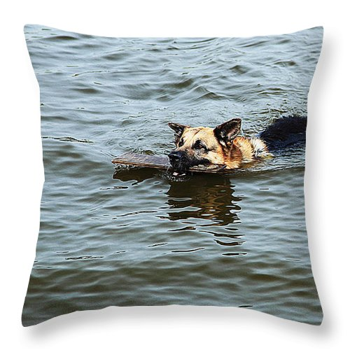 Dog Art Throw Pillow featuring the painting Swimming Dog by Queso Espinosa