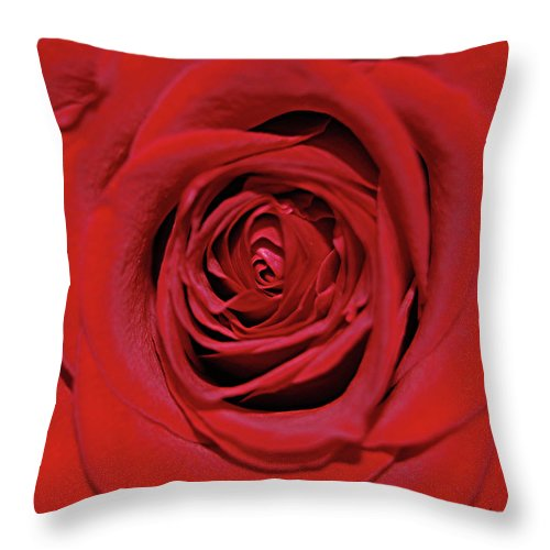 Rose Throw Pillow featuring the digital art Swirling Red Silk by DigiArt Diaries by Vicky B Fuller
