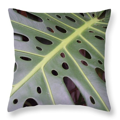 Swiss Cheese Plant Throw Pillow featuring the photograph Swiss Cheese Plant by Michelle Miron-Rebbe