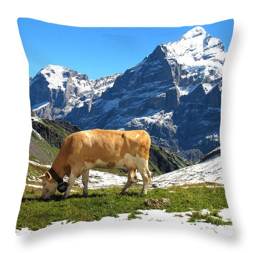 Switzerland Throw Pillow featuring the photograph Swiss Scene by Mary Ellen Mueller Legault
