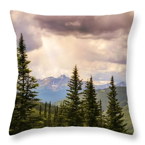 Heavens Throw Pillow featuring the photograph Take Heart by LeAnne Perry