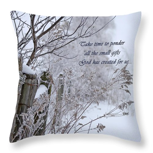 Ponder Throw Pillow featuring the digital art Take Time To Ponder by Cathy Beharriell