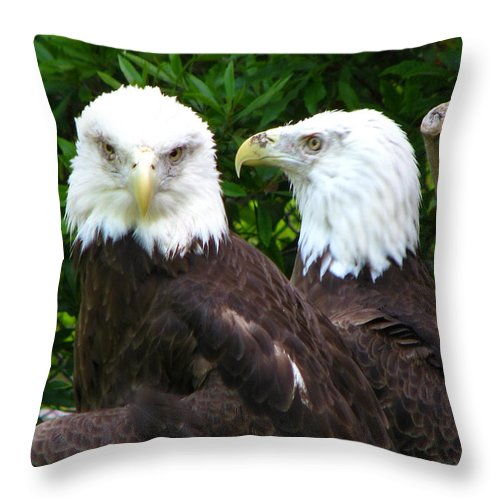 Throw Pillow featuring the photograph Talking To Me by Greg Patzer