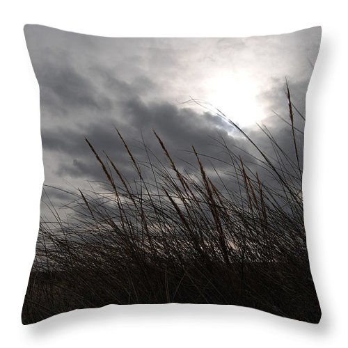 Nature Photography Throw Pillow featuring the photograph Tall Grass And The Blues by Kathleen Sartoris