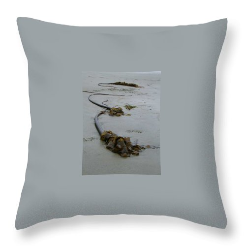 Kelp On Beach Throw Pillow featuring the photograph Tall Kelp by Claudia Stewart